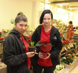 Kiipulassa liiketaloutta opiskelevat Aile Sadik ja Christa Vesala saavat joulupuodissa käytännön työoppia.