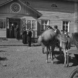 Niskavuoren naiset filmattiin Hauholla 80 vuotta sitten