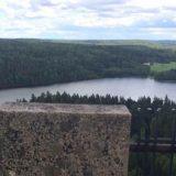 Sibeliuksen metsästä uusi luonnonsuojelualue Hämeenlinnaan