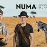 Skogsterin livessä Numa